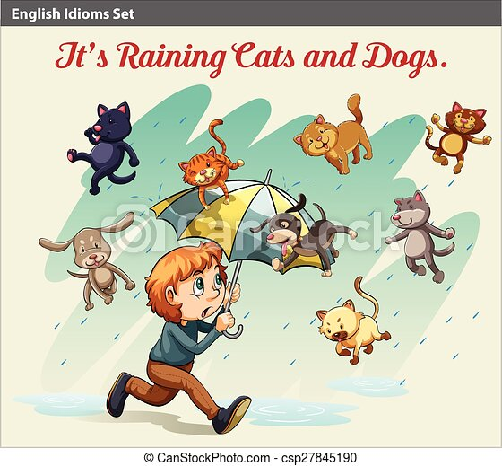 An idiom showing a rain with animals - csp27845190