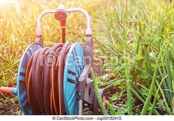 An image of a garden hose. Hose for irrigation - csp59182415