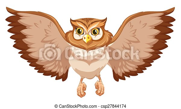 An Owl Brow Owl With Open Wings