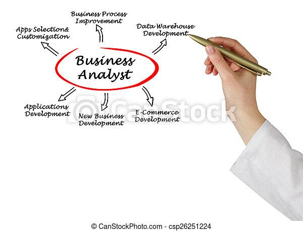 Analista de negocios - csp26251224