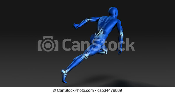 anatomie, visible, muscles, squelette, humain - csp34479889