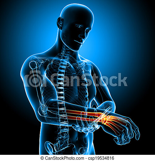 3d rendered illustration of male hand pain anatomy on blue