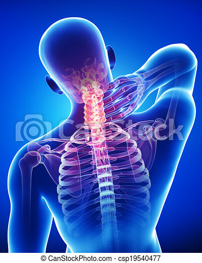 Anatomy Of Male Neck Pain On Blue 3d Rendered Illustration Of Male