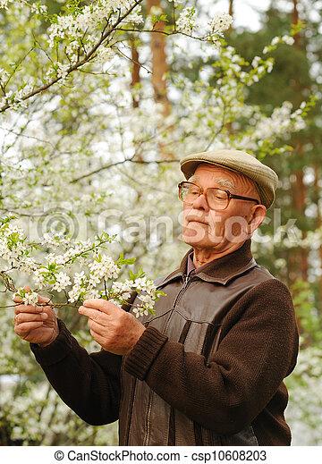 Un hombre mayor trabajando en un jardín - csp10608203
