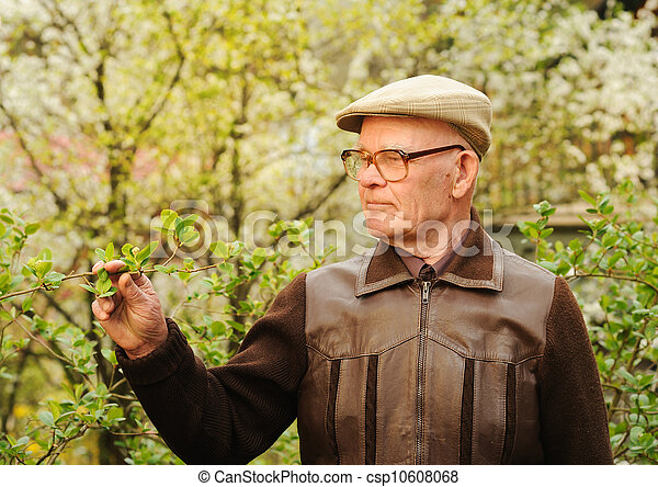 Un hombre mayor trabajando en el jardín - csp10608068