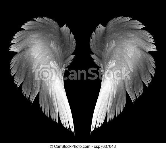 angel wings - csp7637843