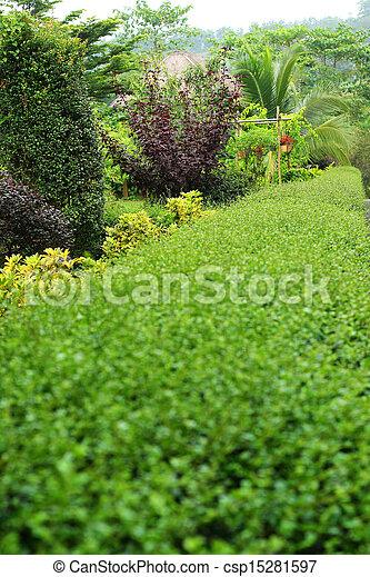 anglaise, garden. - csp15281597