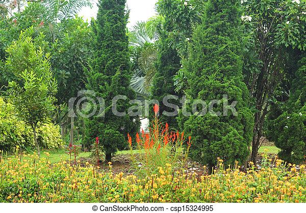 anglaise, garden. - csp15324995
