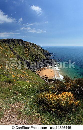 Cote Sud Angleterre angleterre, côte ouest, devon, littoral, sentier, sud. angleterre