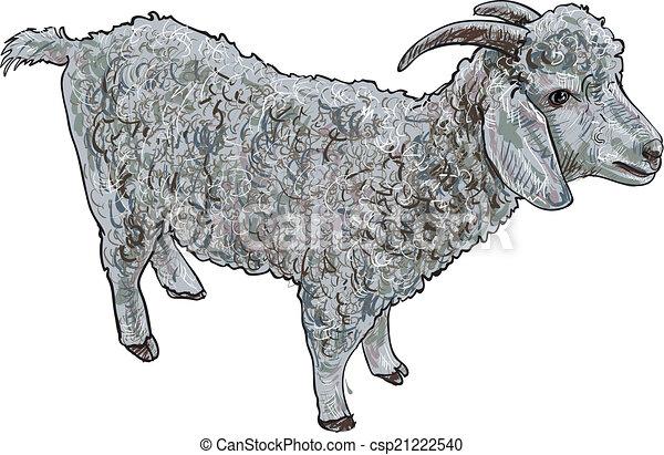Angora Goat Vector Sketch Vector Of Angora Goat On White