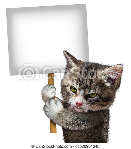 Angry Cat Holding Sign - csp20904048