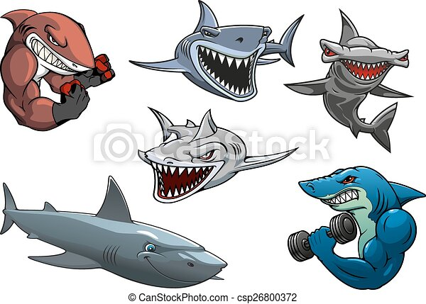 angry grey white and hammerhead sharks cartoon characters vector