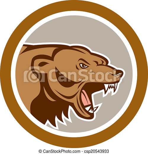 Angry Grizzly Bear Head Circle Cartoon - csp20543933