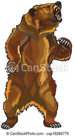 angry grizzly bear  - csp18266779