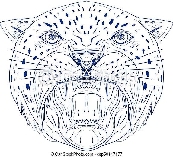 Angry-jaguar-head-frnt-dwg. Bosquejo, pantera, leopardo, es, enojado ...