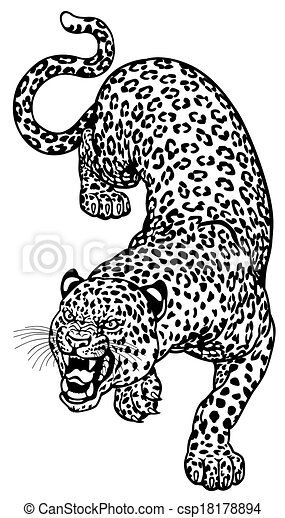 Angry Leopard Black White Vector