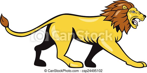 angry lion walking roar cartoon illustration of an angry lion big