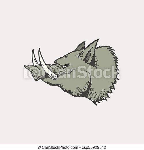 Angry of wild hog mascot - csp55929542