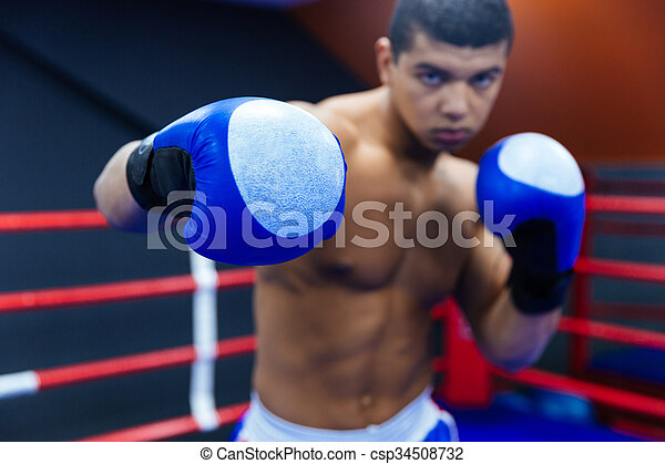 Boxeo y lucha