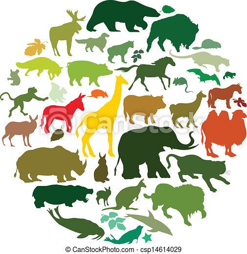 animais - csp14614029