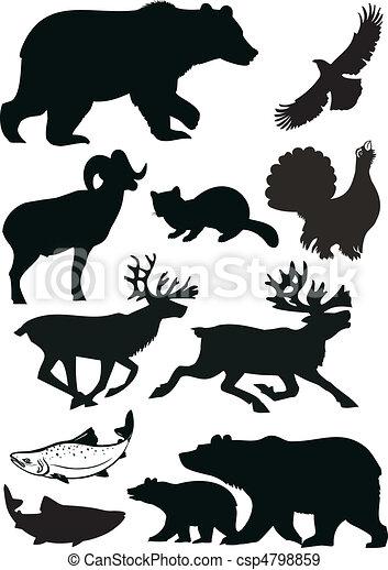 animais selvagens - csp4798859