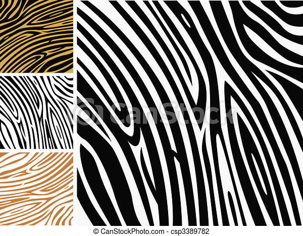 Animal background pattern - zebra skin print - csp3389782
