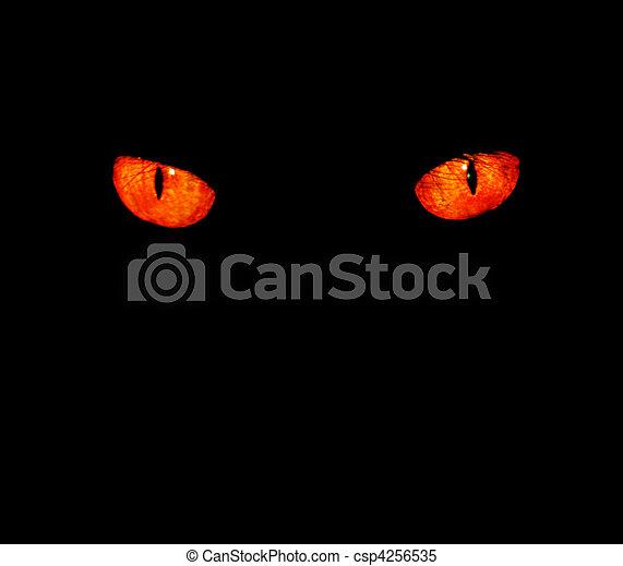 Animal eyes in black - csp4256535