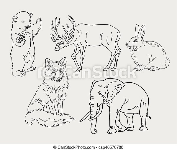 Animal Hand Drawing Line Art Animal Line Art Drawing Style Good Use For Symbol Web Icon Mascot Sign Sticker Or Any Canstock