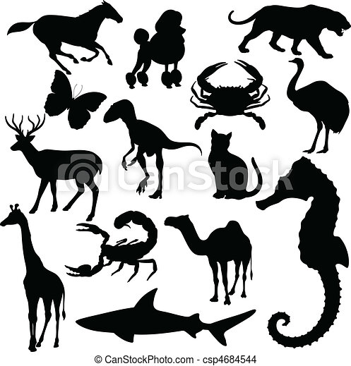 animal of the world vector - csp4684544