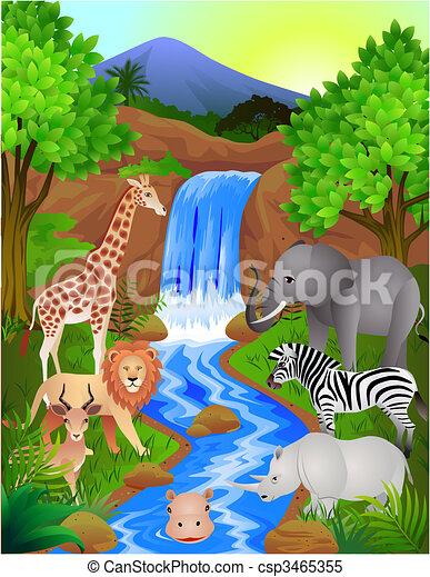 animal selvagem - csp3465355