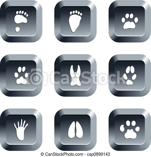 animal track buttons - csp0899143
