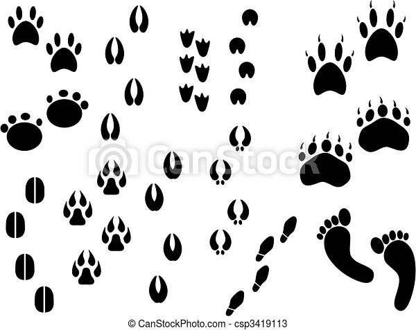 set of real animal tracks vectors search clip art illustration rh canstockphoto com animal tracks clipart free animal tracks clipart free