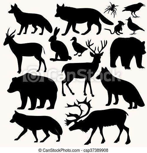 Animales en el bosque - csp37389908