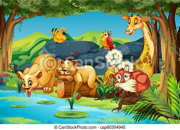 Animales en el bosque - csp60304945
