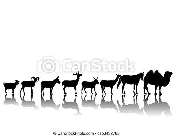 Animales tontos - csp3432765