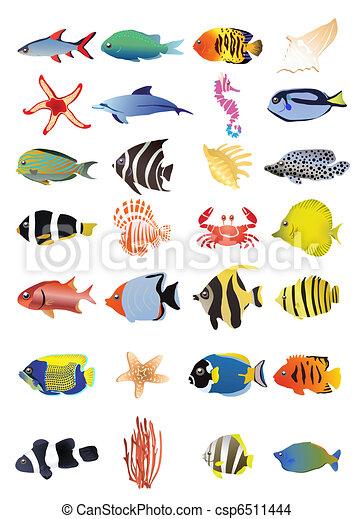 Colecci n vector animales marinos ilustraci n - Clip art animali marini ...