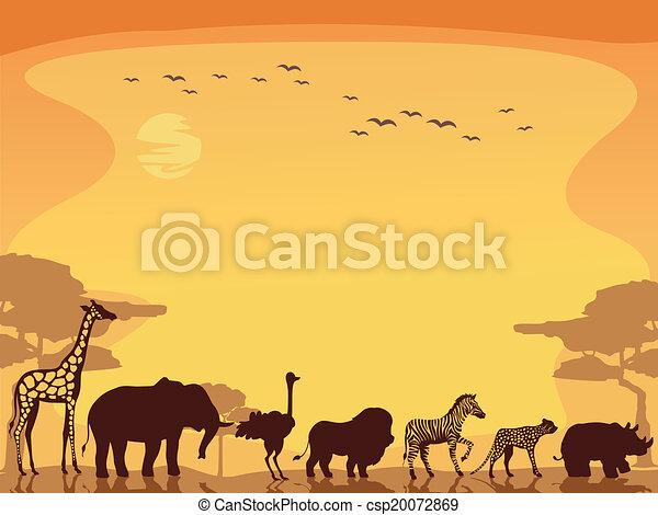 Fondo de animales safari - csp20072869