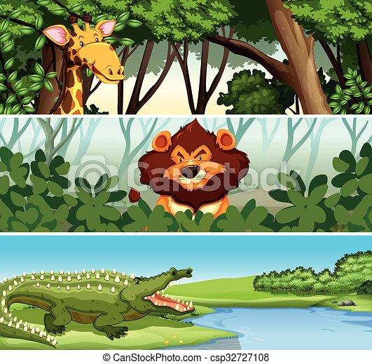 Animales salvajes en el bosque - csp32727108