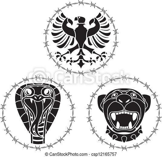 Animales salvajes - csp12165757