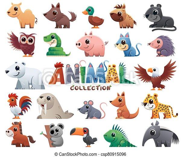 animales salvajes - csp80915096