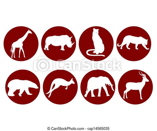 Animales salvajes - csp14565035