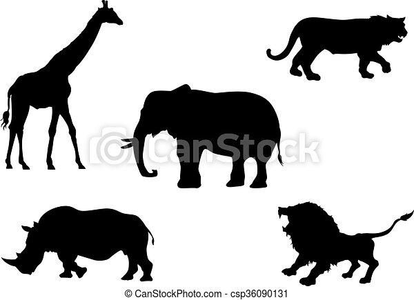 Animales salvajes - csp36090131