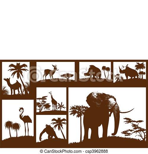 animali, collezione, (vector), africano - csp3962888