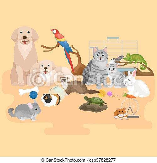 Animali pappagallo set cane gatto criceto animali for Bloccare i piani domestici