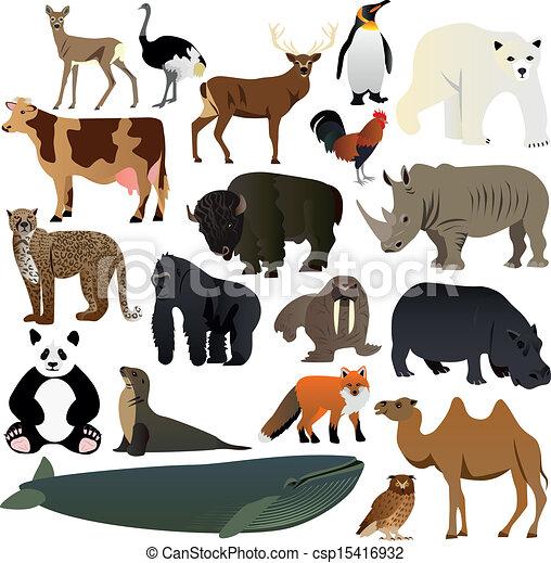 Animals 2 - csp15416932