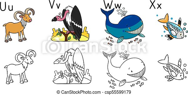 Animals Alphabet Or Abc Coloring Book