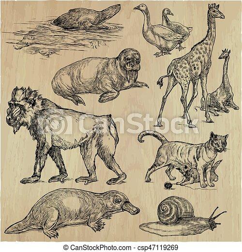 Animals - An hand drawn vector pack, line art - csp47119269