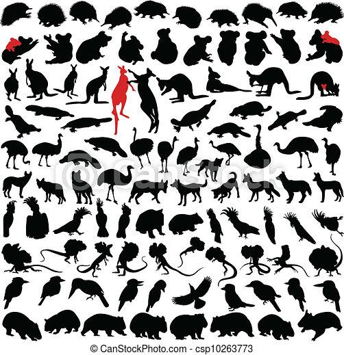 Animals Australia - csp10263773