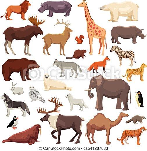 Animals Big Set - csp41287833