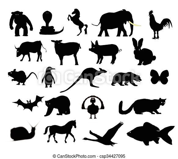 Animals Collection Silhouette - csp34427095